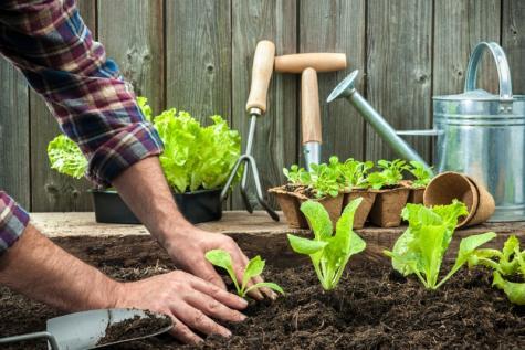produits de jardinage